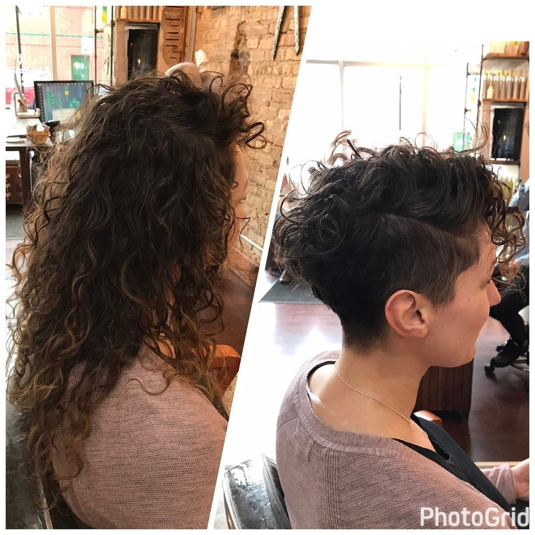 Folta chioma di capelli ricci valorizzata da un pixie cut asimmetrico con rasatura laterale